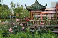 上海民远职业技术学院