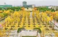 华东师范大学-闵行校区大师林
