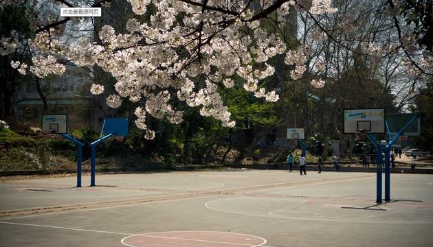 武汉理工大学