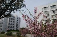 浙江育英职业技术学院
